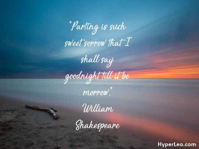 Famous Romeo And Juliet Quotes