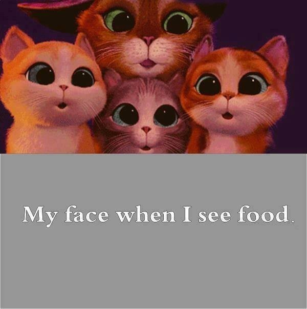 Funny Food Quote  Picture Quote
