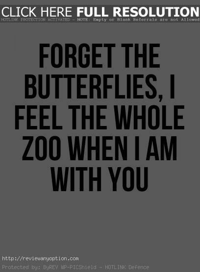 Funny Quotes About Love Fair Best  Funny Romantic Quotes Ideas On Pinterest Sweet Romantic