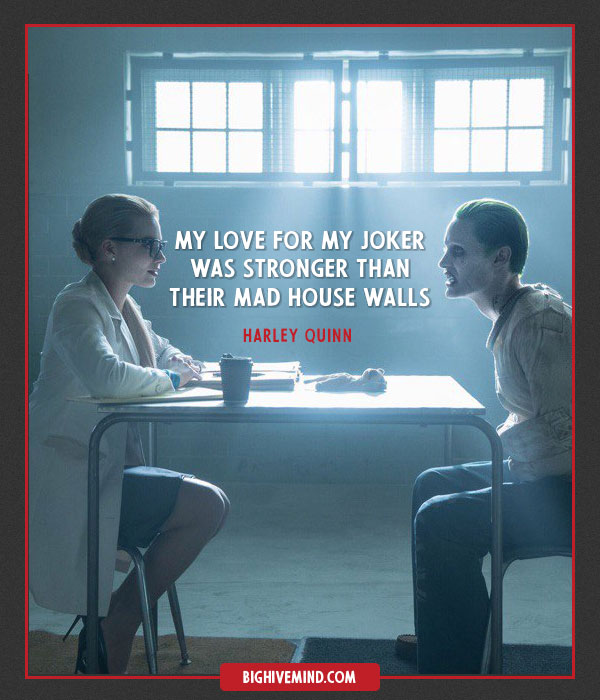 Harley Quinn My Love For My