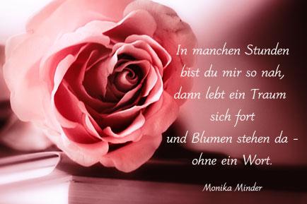 Bilderspruche Blumenbilder Mit Zitaten Und Kurzen Weisheiten