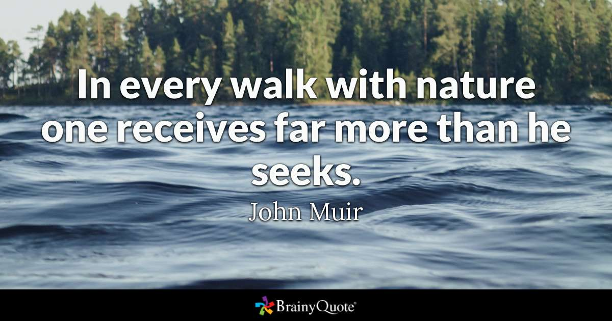 In Every Walk With Nature One Receives Far More Than He Seeks John Muir