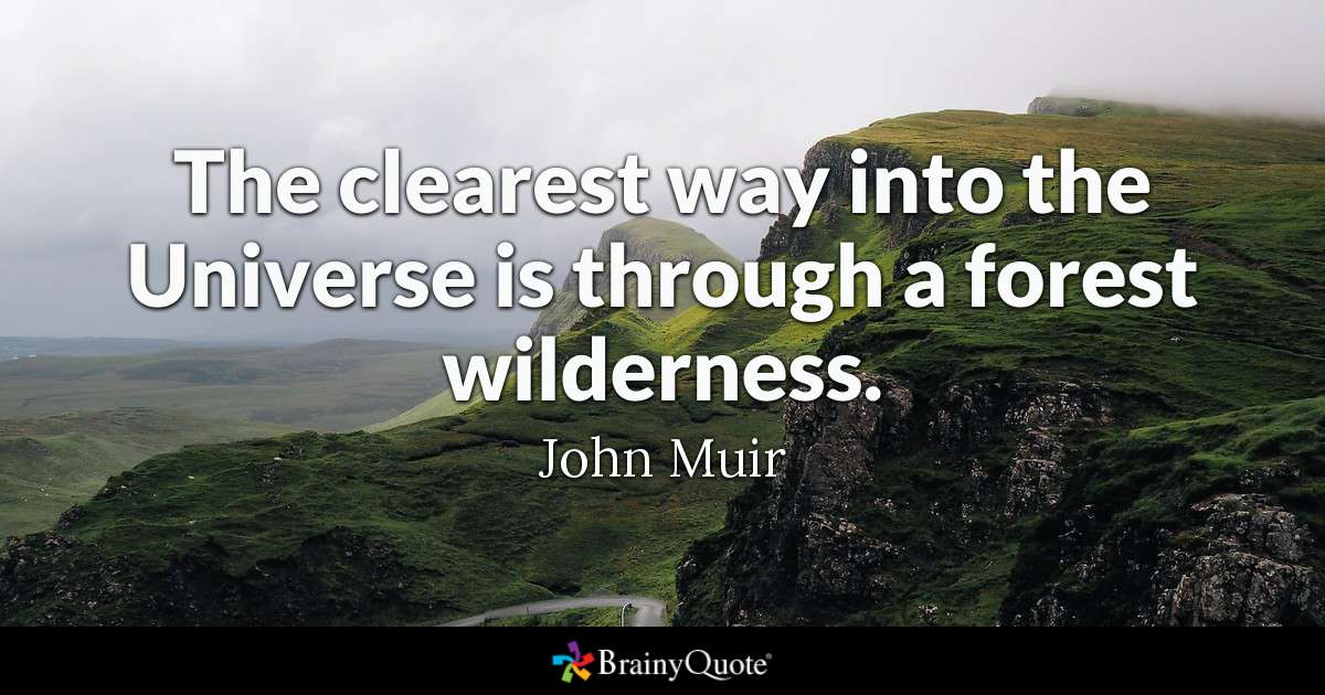 The Clearest Way Into The Universe Is Through A Forest Wilderness John Muir
