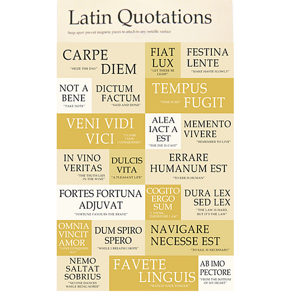 Latin Quotes About Friendship Alluring Latin Friend Quotes Love Sayings Cannot Be Commandedfriendship