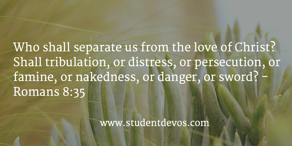 Daily Bible Verse And Daily Devotion Fors And Youth On The Love Of