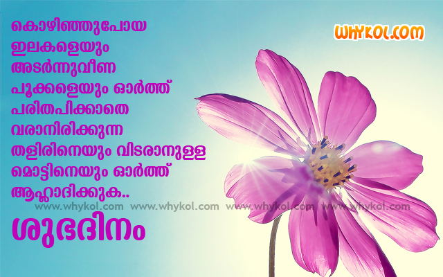 Images Malayalam Goodmorning Wishes