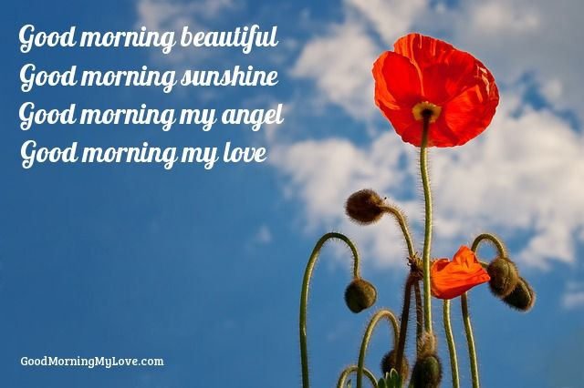 Morning Love Quotes For Her