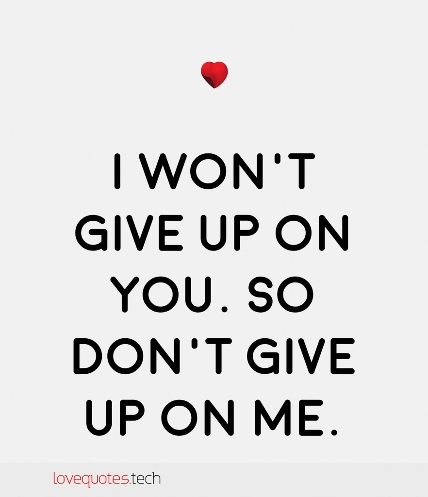 I Will Never Give Up Love Quotes Hover Me