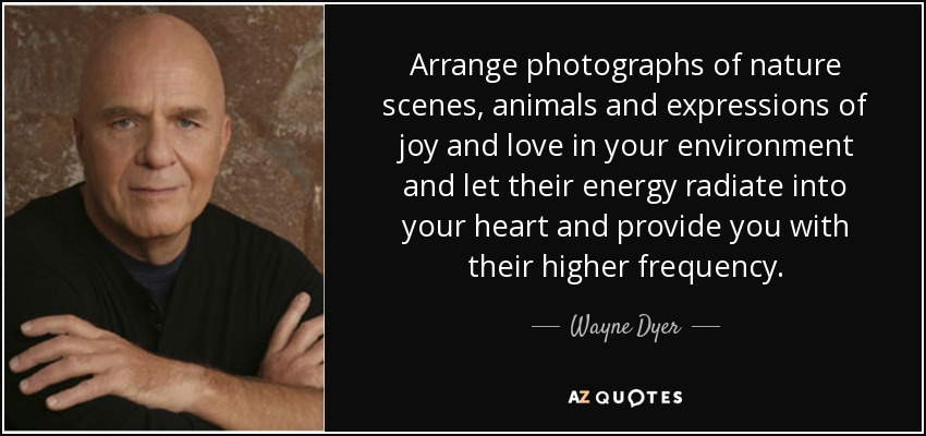 Arrange P Ographs Of Nature Scenes Animals And Expressions Of Joy And Love In Your Environment