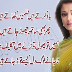 Sad Quotes About Life And Love Pain In Urdu Best Quote
