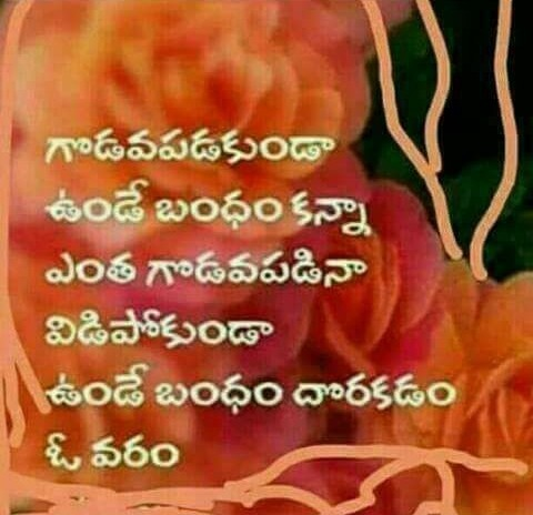 Love Marriage Quotes In Telugu Hover Me