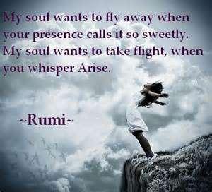 Rumi Quotes On Soul Kalam E Rumi