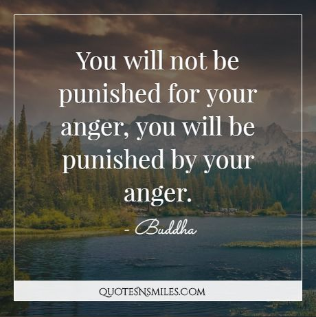 Buddha You Will Not Be Punished For Your Anger You Will Be Punished By Your Anger