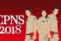 Pengumuman hasil skd dan jadwal tes skb CPNS 2018