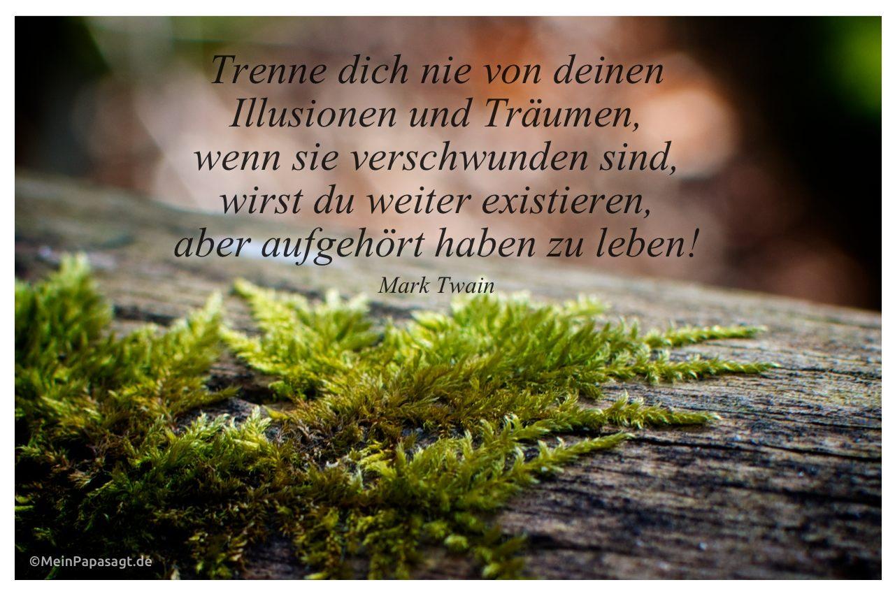 Moos An Einem Baumstamm Mit Dem Mark Twain Zitat Trenne Dich Nie Von Deinen Illusionen