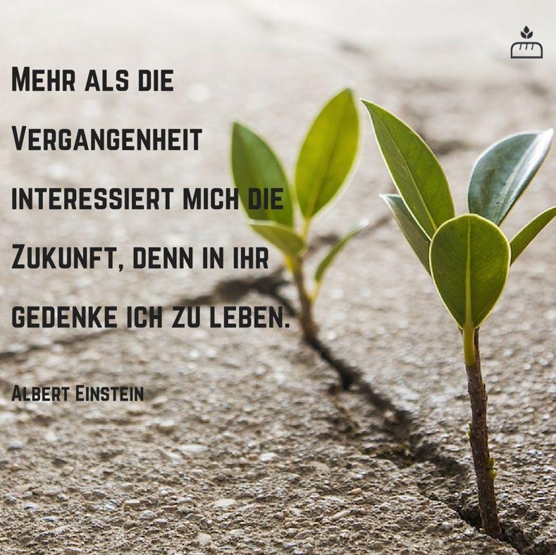 Vergangenheit Interessiert Mich Zukunft Denn In Ihr Gedenke Ich Zu Leben Albert Einstein Dankebitte Spruche Gedanken Weisheiten Zitate