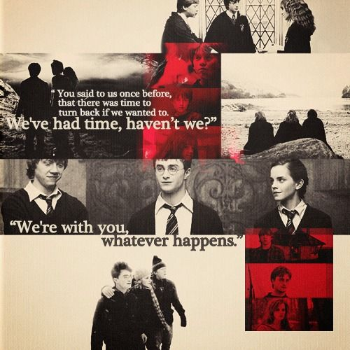 Were Coming With You That Was Decided Months Ago Years Really Harry Potter Freundschaft Zitateharry Potter