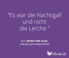 Mit Der Ebook De Zitat Maschine Schonsten Literatur Zitate Entdecken Und Auf