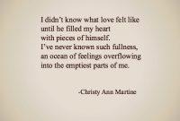 What Love Feels Christy Ann Martine