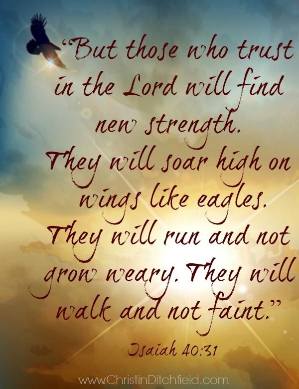 Those Who Trust In The Lord Isaiah  More