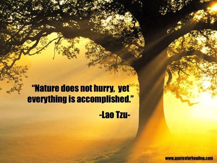 Lao Tse Tung Quotes