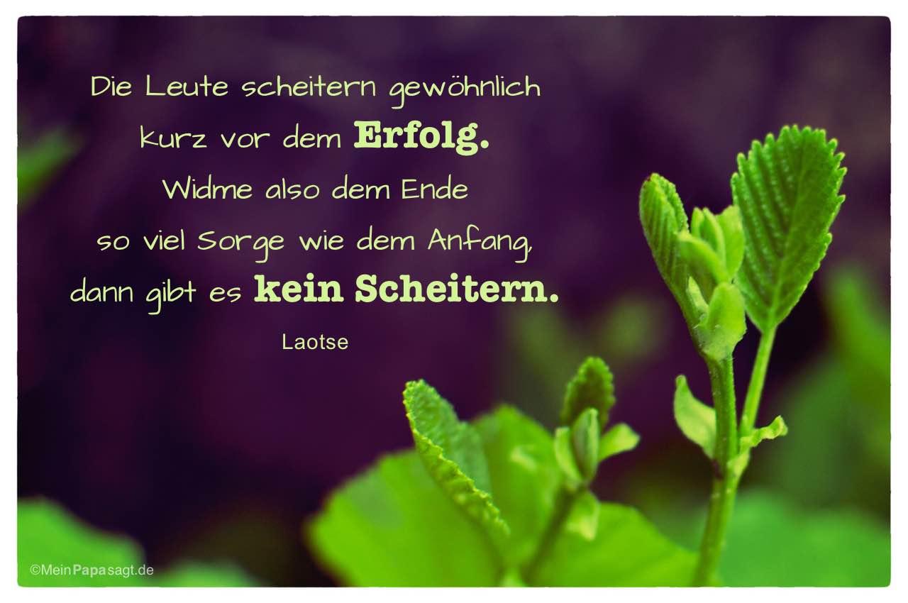 Image Result For Zitate Bibel Arbeit