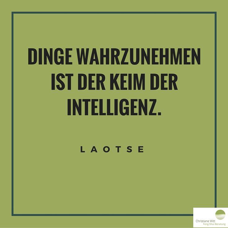 Zitat Von Laotse Zitat
