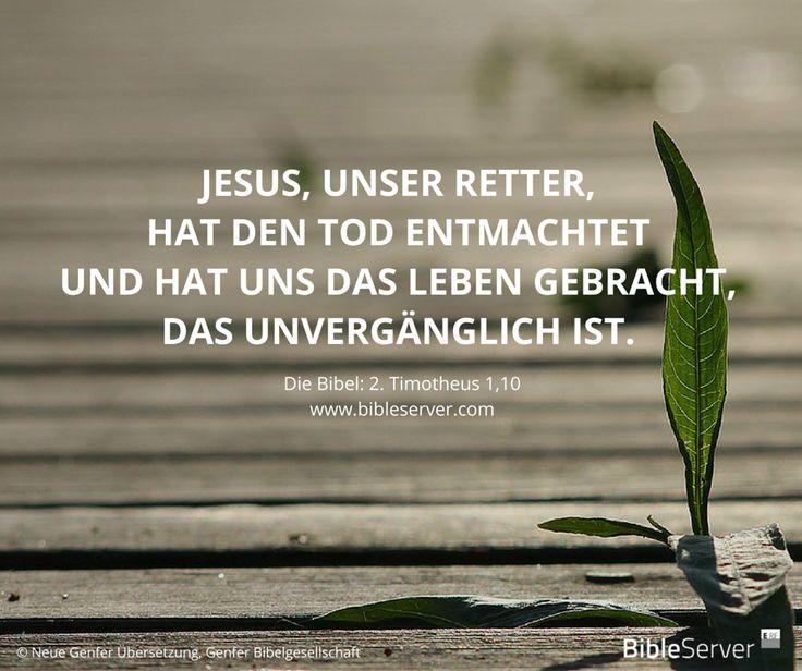 Jesus Ist Starker Als Der Tod Der Spruch Des Tages Steht In Der Bibel