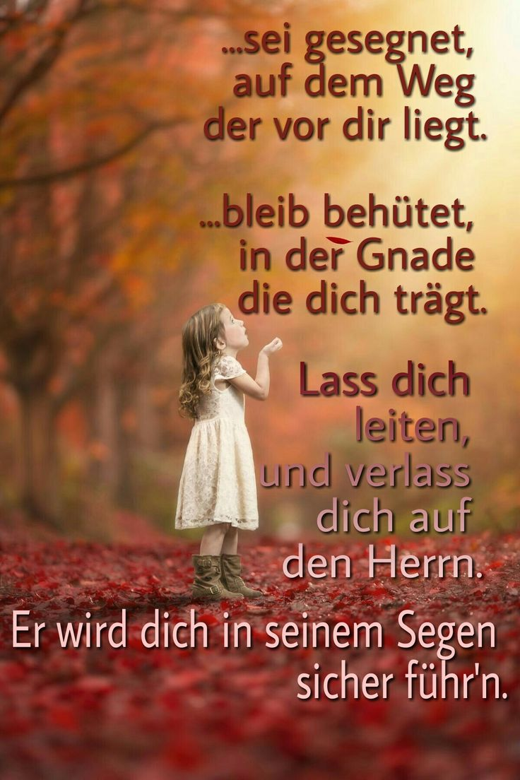Best Images About Bibelverse Zitate On Pinterest Deutsch Texts And Joyce Meyer