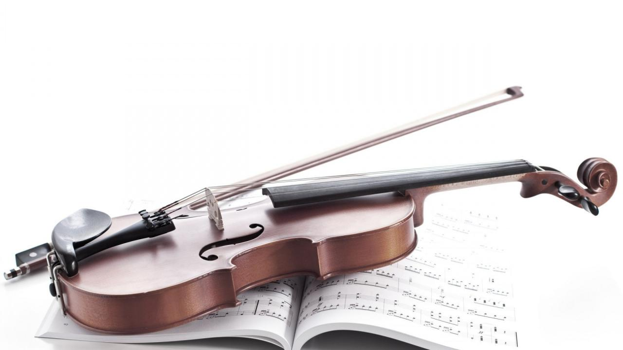 Image Result For Zitate Musik Violine