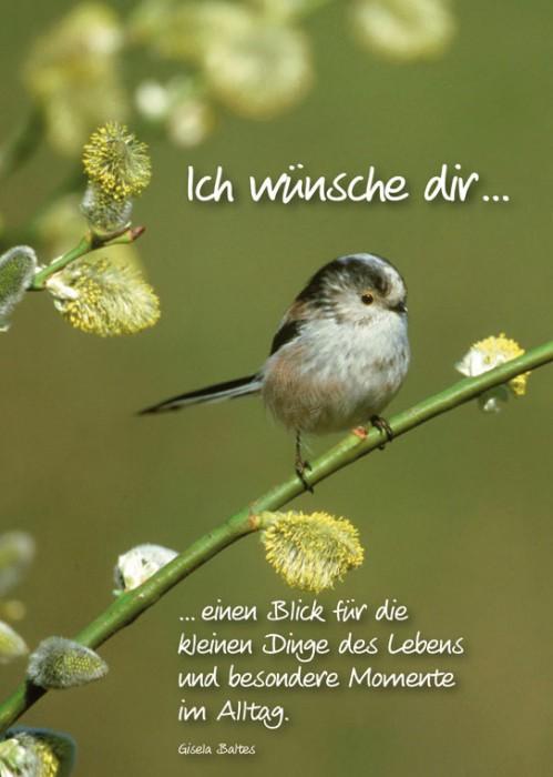 Geburtstags Wnsche New Calendar Template Site