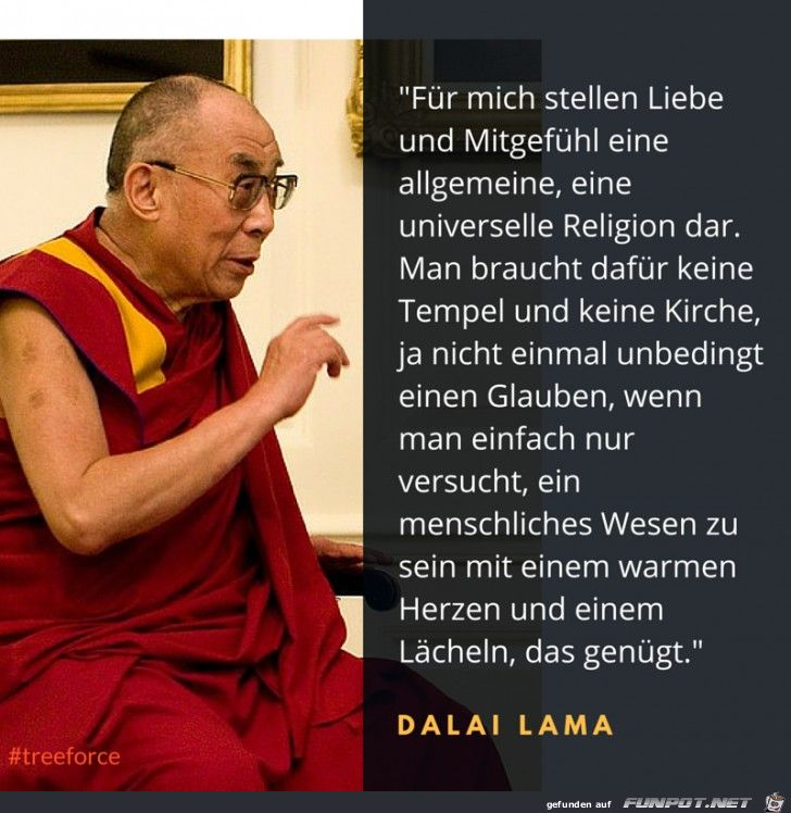 Best Zitate Images On Pinterest Dalai Lama Proverbs Quotes And Psychology