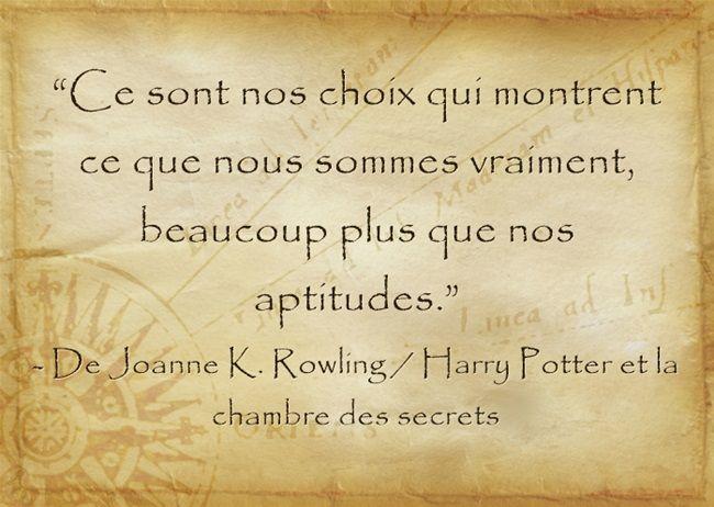 De Joanne K Rowling Harry Potter Et La Chambre Des Secrets