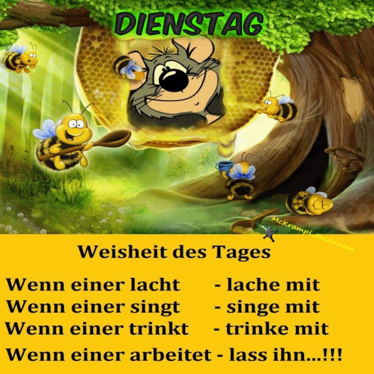 Image Result For Zitate Englisch Happiness