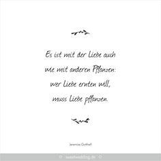 Trauspruche Zitate Hochzeit Liebe Gluck Es Ist Mit Der Liebe