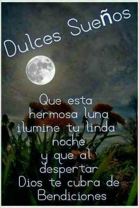 Kreise Sus Blog Spanisch Tagliche Zitate Gute Nacht Nachrichten Gute Nacht Gruse Bilder Fur Eine Gute Nacht Ermutigende Zitate