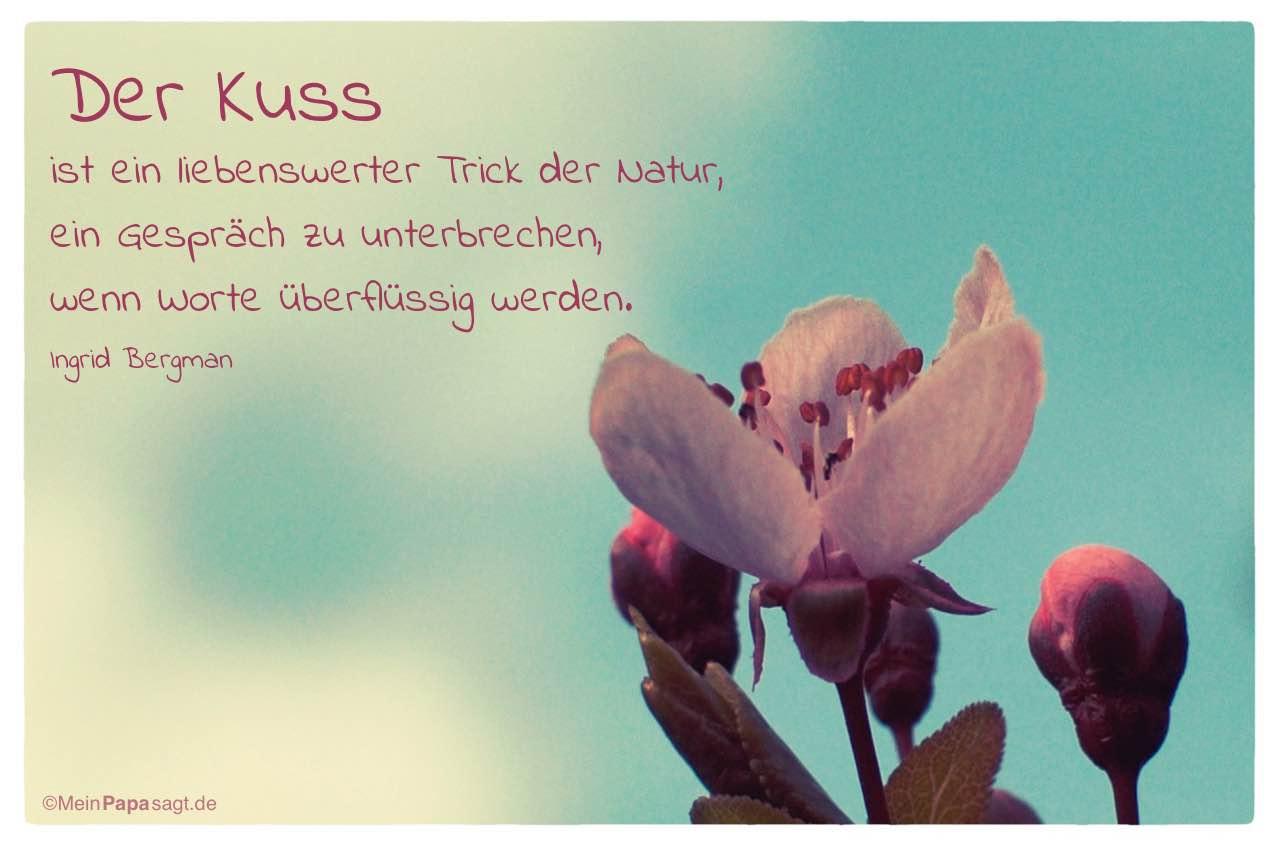 Blute Mit Dem Ingrid Bergman Zitat Der Kuss Ist Ein Liebenswerter Trick Der Natur