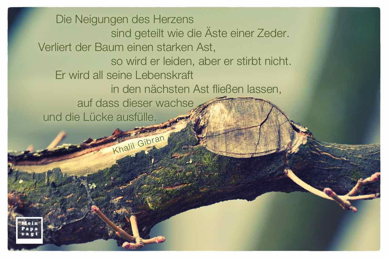 Image Result For Goethe Zitate Zum Thema Tod