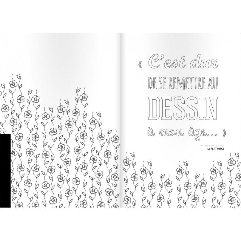 Schonsten Zitate Von Antoine De Saint Expuery Zum Ausmalen Franzosische Ausgabe La Boutique Du Petit Prince