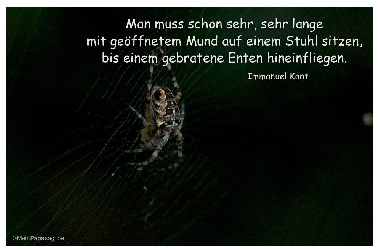 Image Result For Albert Einstein Zitate Zeit