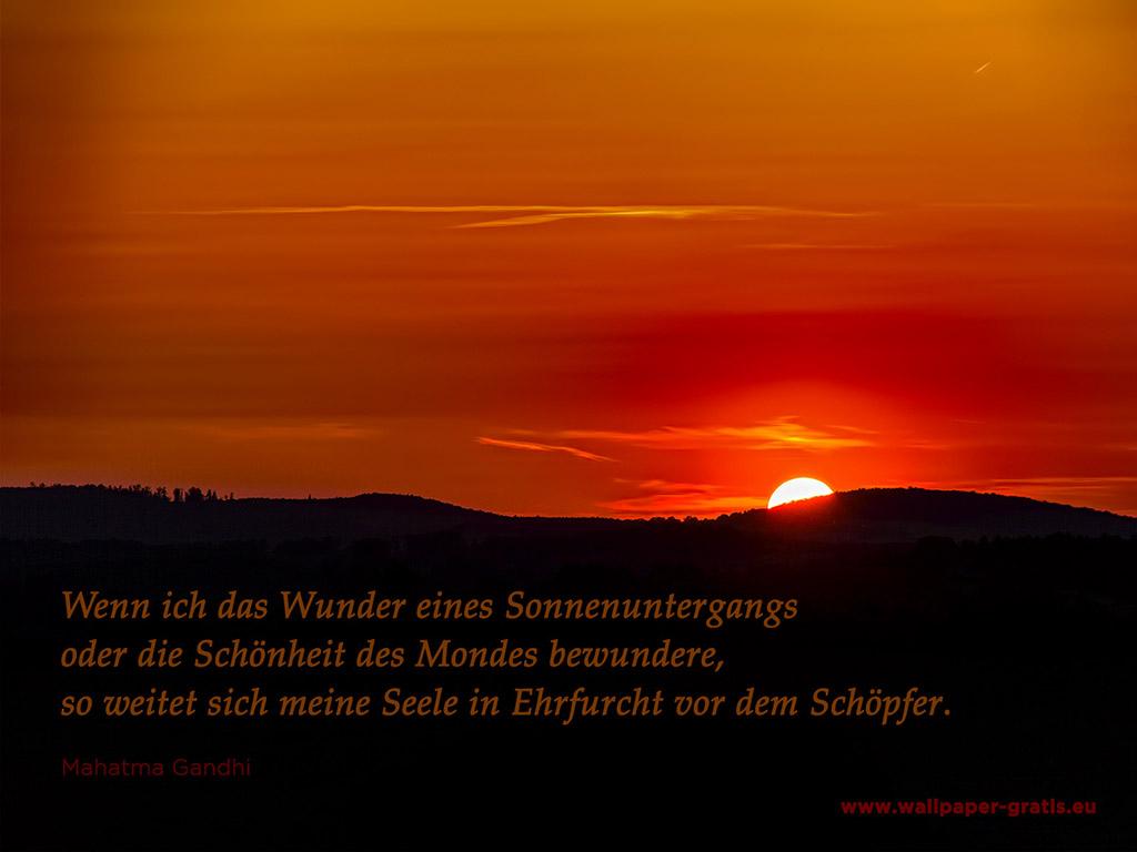 Image Result For Zitate Kurz Vor Dem Tod