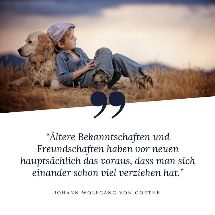 Zitate Goethe Freundschaft Alte Freunde Spruche Zitat  Zitate Uber Freundschaft Und Freundschaftsspruche Fur Beste Freunde