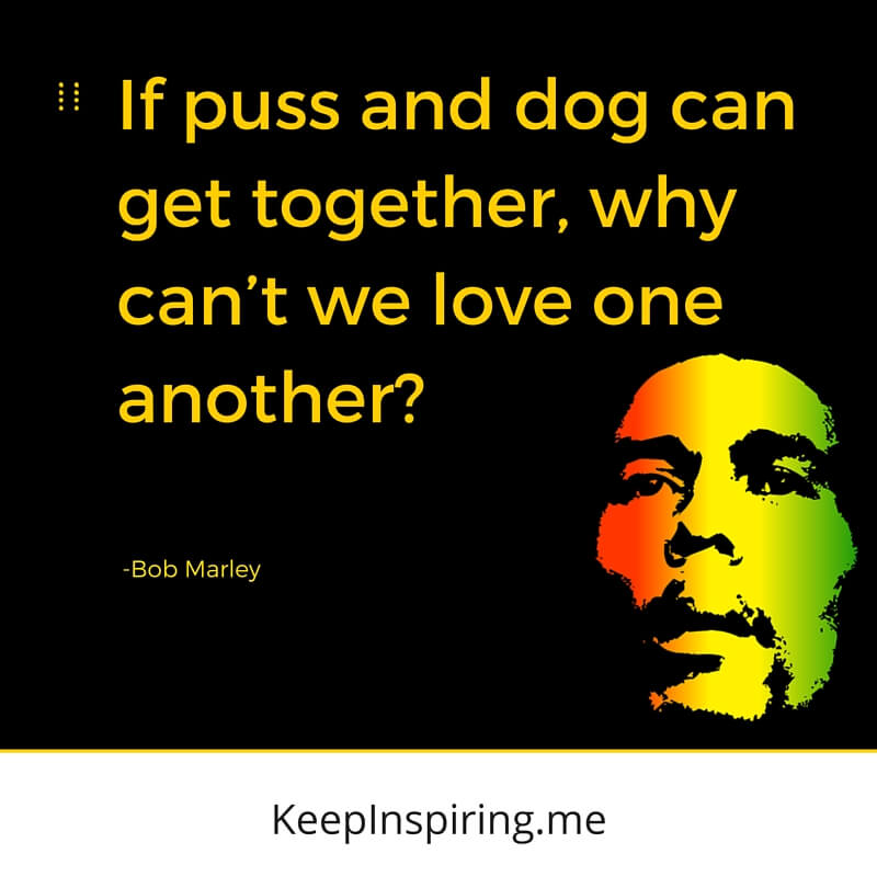 Puss And Dog Bob Marley