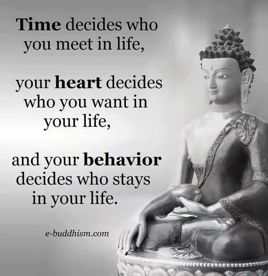 Awesome Pin Love This Site Http Www Bottlemeamessage Com Great Way  C B Buddha Buddhismquotes