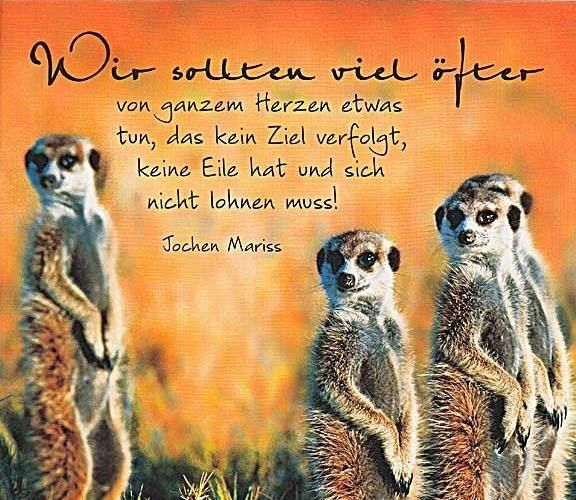 Image Result For Gute Kraftklub Zitate