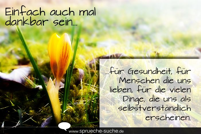 Image Result For Zitate Geburtstag Lessing