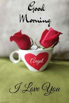 Good Morning Angel I Love You Pic With Red Roses