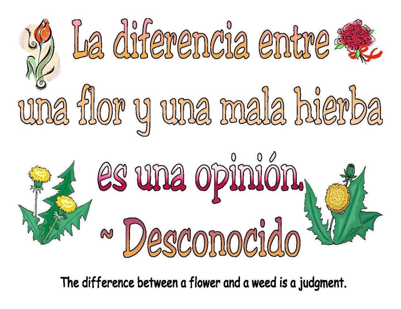Books Publications Spanish Teacherspanish Cl Roomteaching Spanishlove Quotes