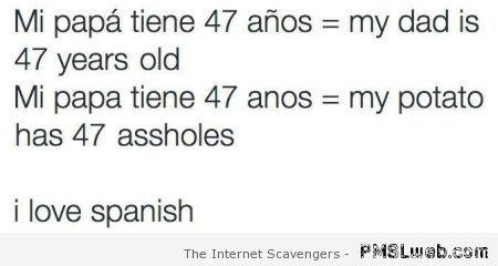 I Love Spanish Funny Quote