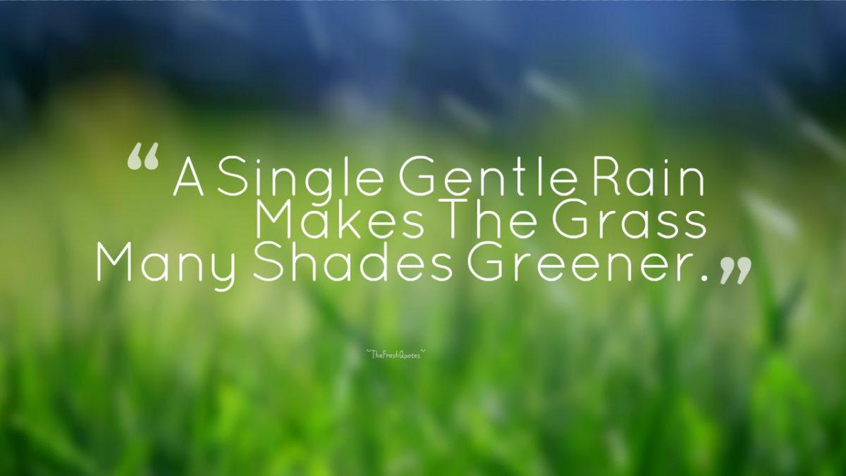 Rain Quotes Romantic Rain Quotes And Happy Rainy Day Quotes